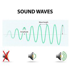 Amplitude a sound wave vector