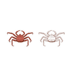 King crab set colorful and vector