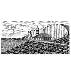 Scenic view vineyards vine plantation french vector