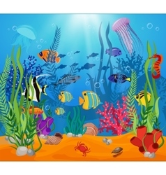 Sea Life Animals Plants Composition vector