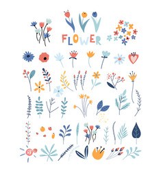 set flowers and floral elements early spring vector image