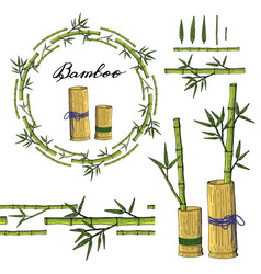 wreath and seamless brush from bamboo elements vector image