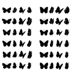 butterfly collection vector image vector image