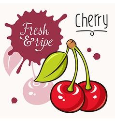Cherry concept 001 vector