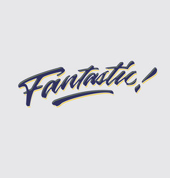 Fantastic hand lettering typography compliment vector