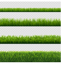green grass borders set isolated transparent vector image