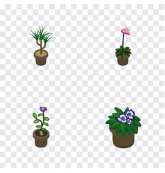 Isometric flower set of flowerpot grower flower vector