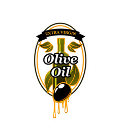 olives bunch icon for olive oil vector image