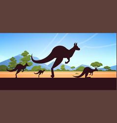 silhouette jumping wild animals kangaroo vector image
