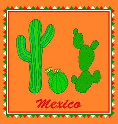 Three green cactuses on orange background vector