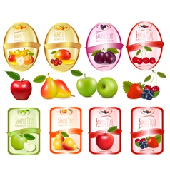 set of labels with berries and fruit vector image vector image