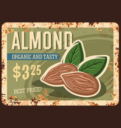 Almond nuts metal rusty plate food poster vintage vector