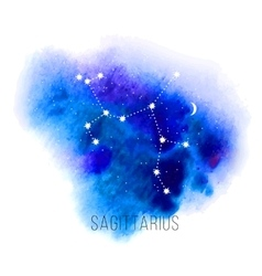 Astrology sign Sagittarius on watercolor vector image