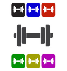barbell with weight plates vector image