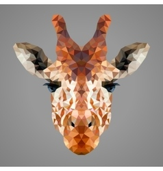 Giraffe low poly portrait vector image