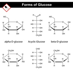 Glucose molecules vector image