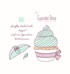Hand drawn cupcake mint flavor vector
