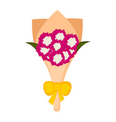 isolated bouquet of verbena flowers vector image