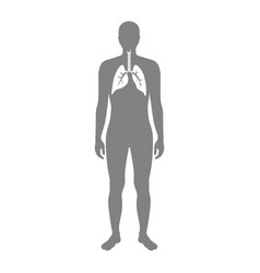 Isolated of lung vector