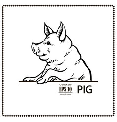 pig black and white vector image