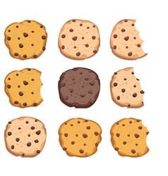 Set chocolate chip cookies vector