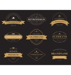 set classic vintage banners or labels vector image