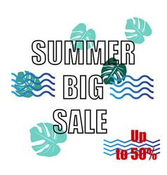summer big sale design vector image