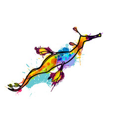 Weedy seadragon made of colorful splashes vector