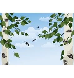 birch on sky background vector image