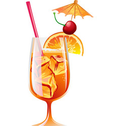 Cocktail Bahama Mama with ice and garnish vector image