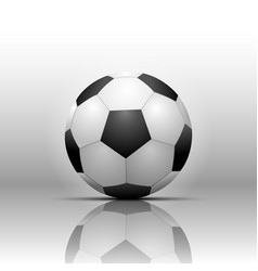 soccer football isolate on white background vector image