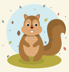 Cartoon squirrel wild animal with falling leaves vector