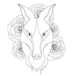 Graceful fox coloring page for adult vector image