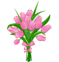 pink tulips with ribbon vector image