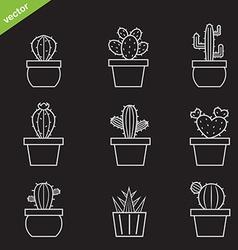 Set cactus icons vector