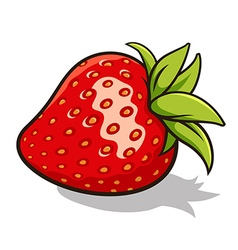 Strawberry 001 vector