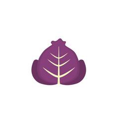 Vegetable purple lettuce flat style icon vector