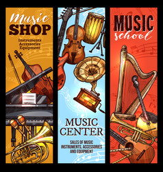 musical instrument banner of classical folk music vector image
