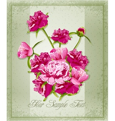 holiday greetings vector image vector image