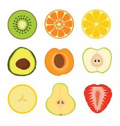 set fruit sliced vector image