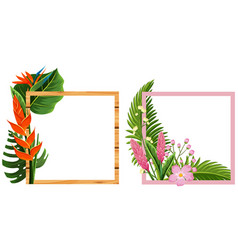 Two frame design with flowers and leaves vector