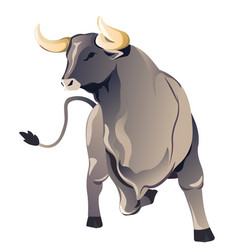 aggressive bull or ox with long horns vector image
