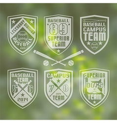 Baseball team emblem vector