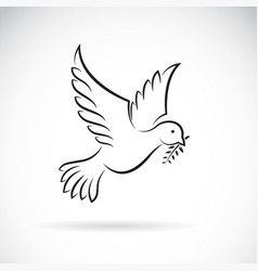 black dove of peace with olive branch on white vector image