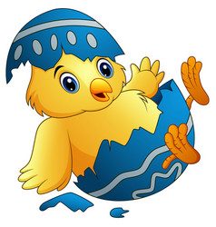 cute little cartoon chick hatched from an egg isol vector image