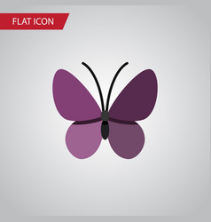 Isolated summer insect flat icon violet wing vector