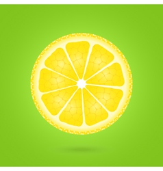 Lemon icon on a green vector image