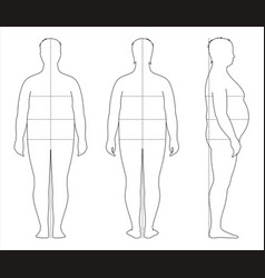 Male fat body lines and proportions for sewing vector