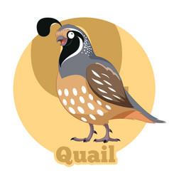 Abc cartoon quail vector