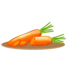 Carrot elements with slices vector